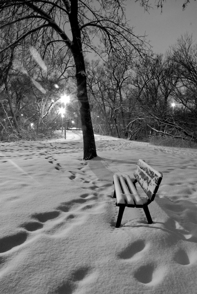 Snow Waits for No One - Click to Return to Gallery